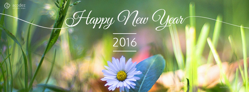 nature new year facebook cover photo 2016